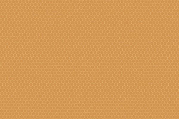 Windham Fabrics Nature Study Hexie Turmeric