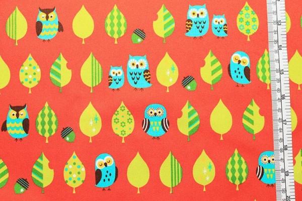 COSMO Eulen owls orange