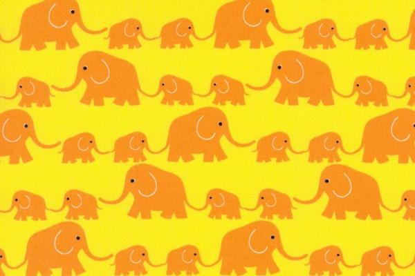 Junge Linie kbA Elefantenparade gelb