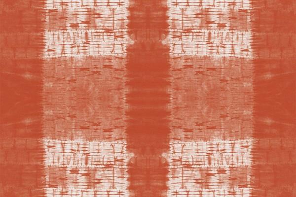 Shirbori Dye coral by Kim Eichler-Messmer