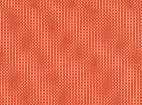 Alexia Abegg Netorius Basics orange