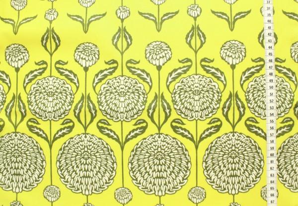 Joel Dewberry BIRCH FARM Chrysanthemum sage
