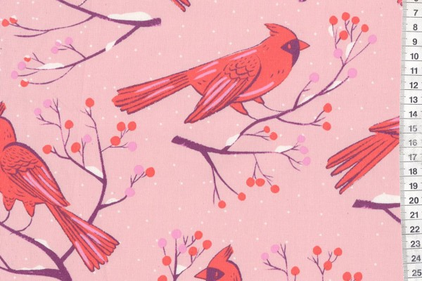 Frost WInter Cardinals Pink by Sarah Watts