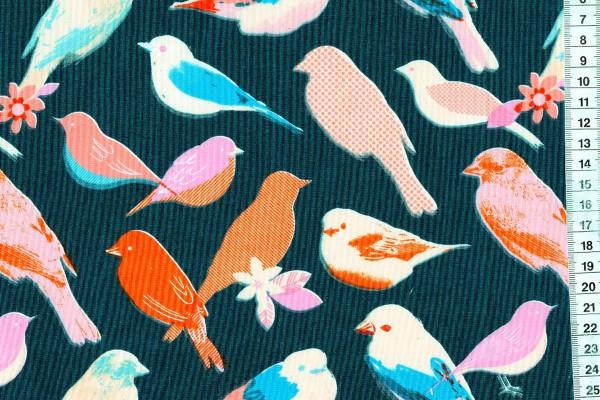 Ruby Star Society Social Birds Navy by Melody Miller