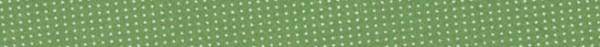 Schrägband Westfalenstoffe Wales grün