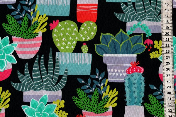 Deser Blooms Spiny Succulents dark grey by Maude Ashbury