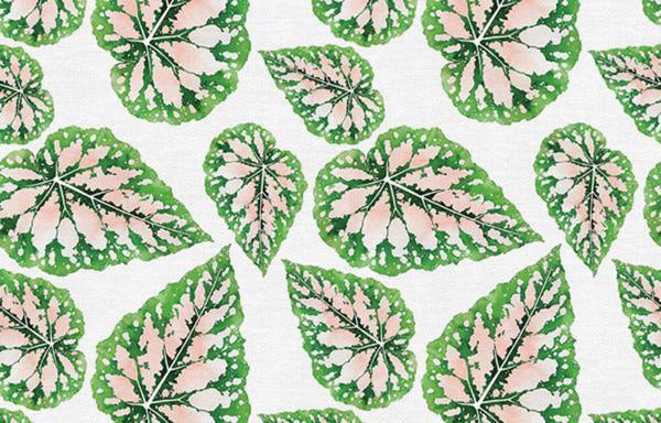 Modern Botanicals by Living Pattern