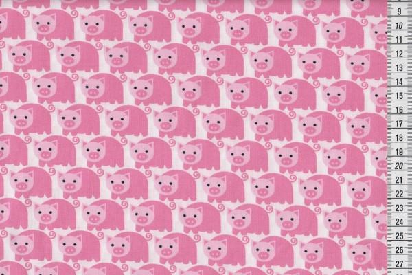 Westfalen Junge Linie Schweinchen