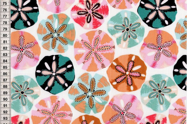 Sea Botanica by Sarah Gordon Sanddollar multi