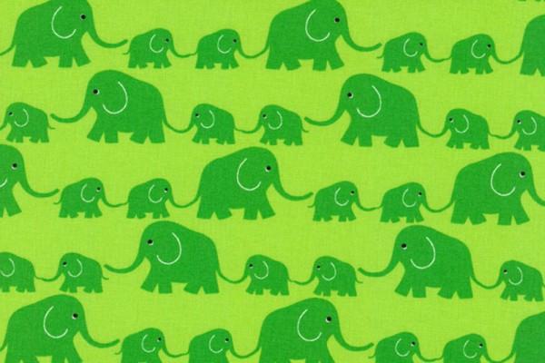 Junge Linie kbA Elefantenparade grün