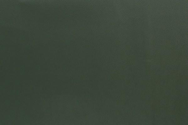 Kunstleder REX dunkelgrün