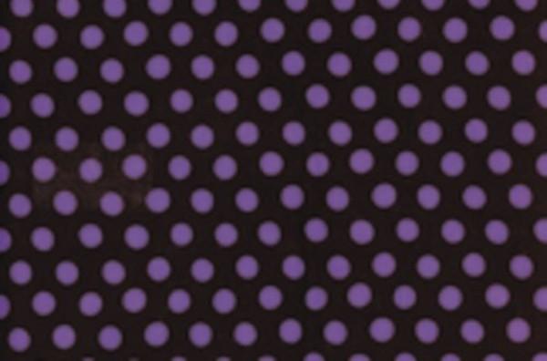 Kaffe Fassett Roman Spot black/violet