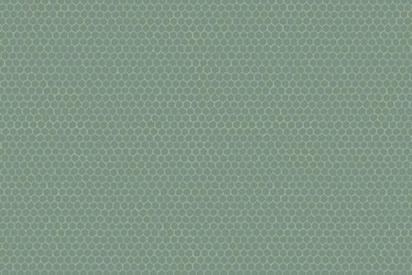 Windham Fabrics Nature Study Hexie Spinach