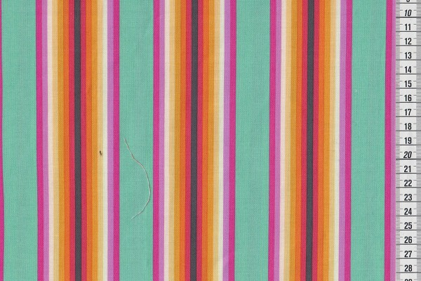 Tula Pink Chipper Tick Tock Stripe