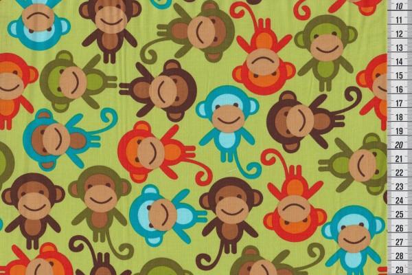 Robert Kaufman Ann Kelle URBAN ZOOLOGIE monkey bermuda