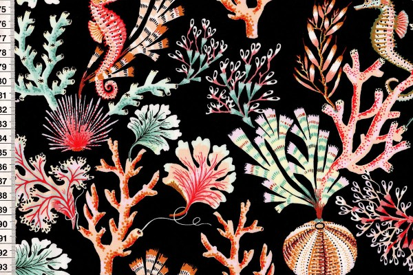 Sea Botanica by Sarah Gordon Sealife black