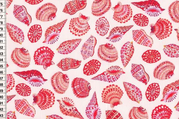 Sea Botanica by Sarah Gordon Shells in pale pink