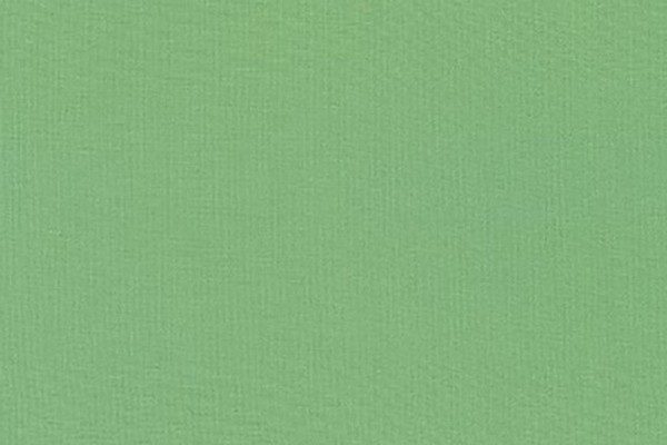 Kona Cotton Solids Robert Kaufman Celadon 1065