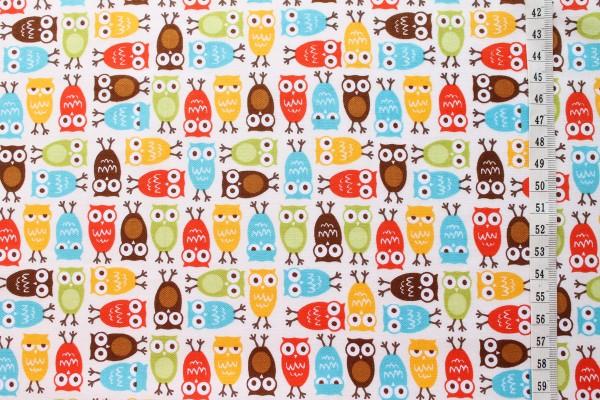 Robert Kaufman Ann Kelle URBAN ZOOLOGIE Minis Owls bermuda
