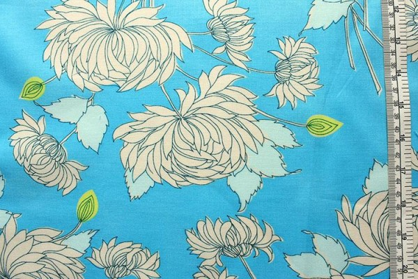 BELLE FULL BLOOM Chrysanthemum Blue