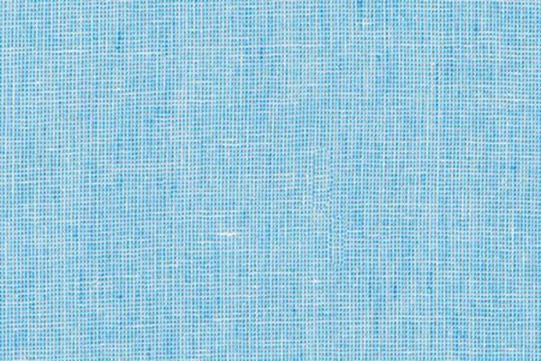 Yarn Dyed Essex Homespun Paris Blue