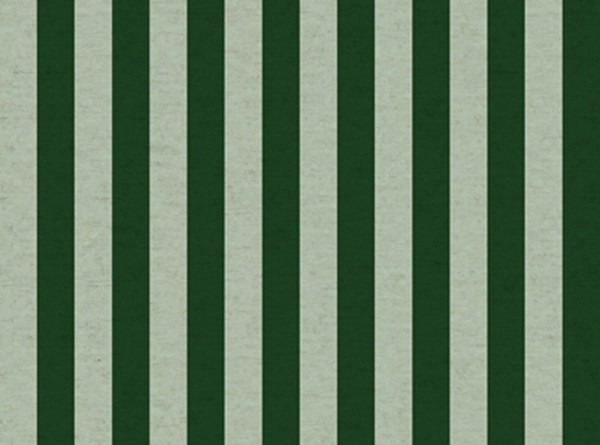 Primavera Rifle Paper Canvas Cabana Stripe mint/green